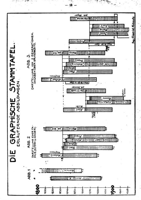 Die graphische Stammtafel - 2