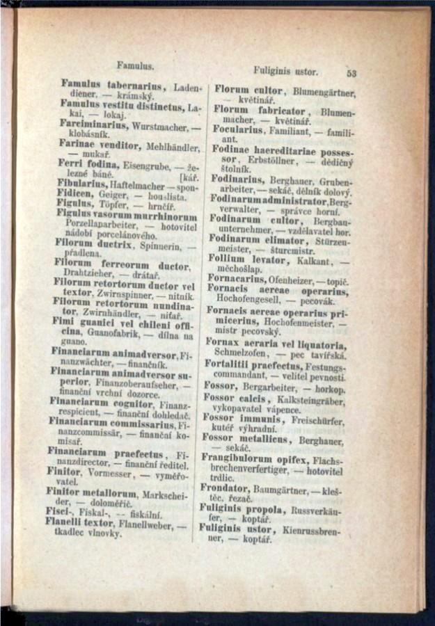 Teil 3 Latein - Deutsch - Böhmisch / von 'Famulus tabernarius' bis 'Fuliginis ustor'